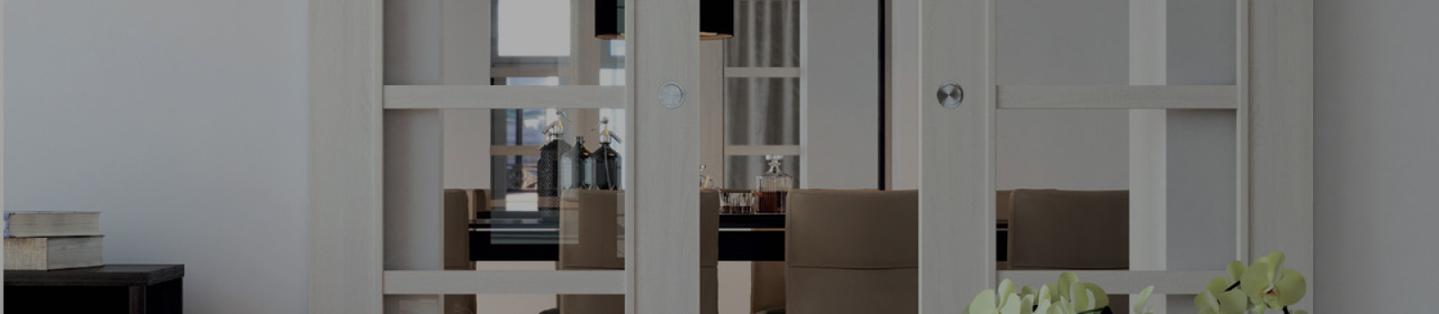 Skleněné dveře Sapglass